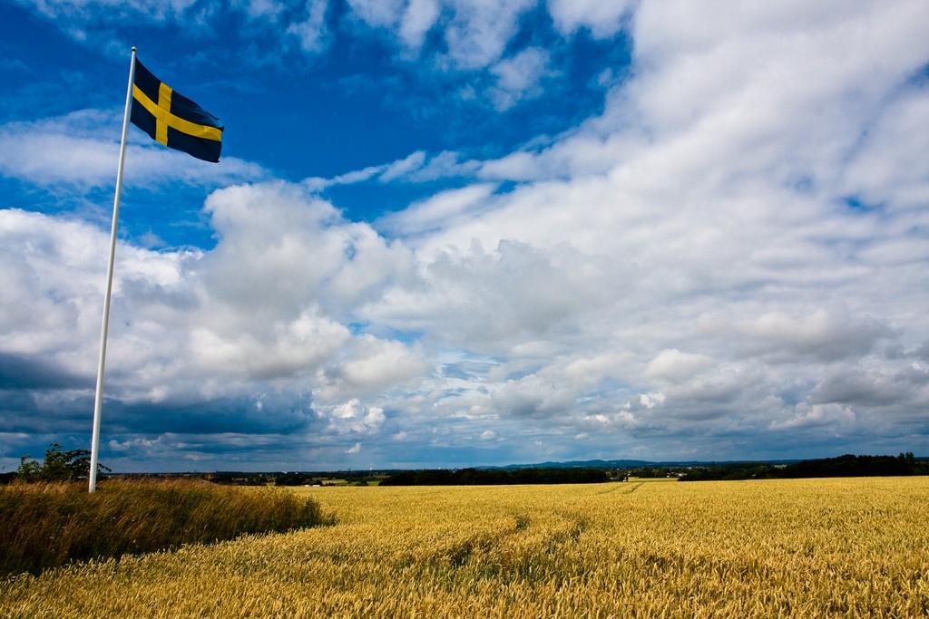 Foto: Håkan Dahlström